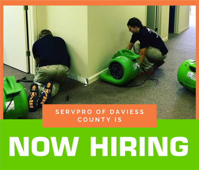 "Photo of man and women setting up equipment in SERVPRO attire. Wording on photo says ""SERVPRO of Daviess County is NOW HIRING"