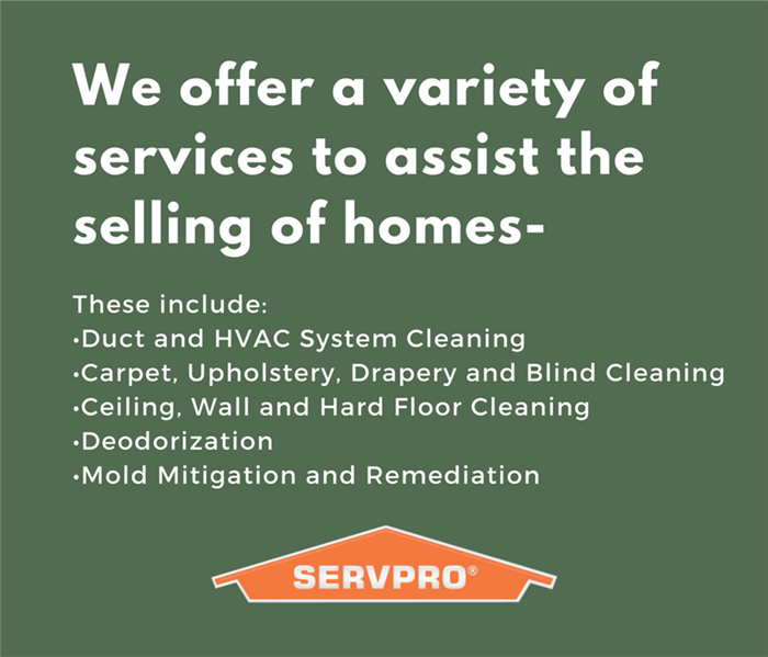 Mold Remediation How We Help Sell Homes!